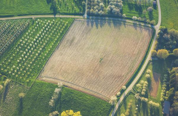 green fields solar farm